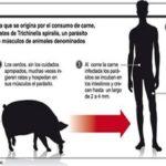 Cuatro casos de triquinosis en Moreno