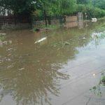 Festa decretó la emergencia meteorológica