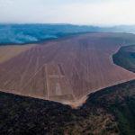 El acaparamiento de tierras agrícolas de Harvard y TIAA en Brasil se hace humo