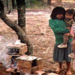 """Muerte de niños wichí en Salta: """"El desmonte nos quitó el hábitat y el alimento, tiene que terminar"""""""