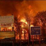 Córdoba: movilizaciones en toda la provincia contra los incendios que destruyen monte nativo