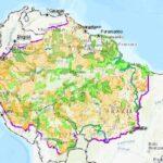 La tercera parte de la Amazonía está altamente amenazada